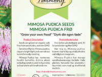 """""""Grow Your own Food"""" - Mimosa Pudica"""